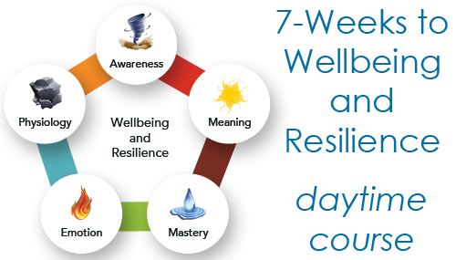 Wellbeing Berkshire 7-Weeks to Resilience and Wellbeing daytime course