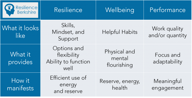 Resilience, Wellbeing, Performance Relationship